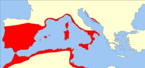 Reparto de alcornocales por Europa y Norte de Africa