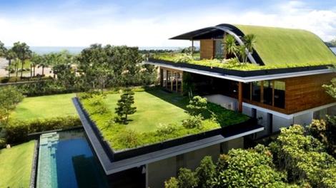 Vivienda con cubierta vegetal.