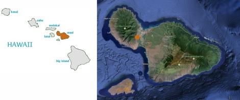 Hawaii_Kamehameha