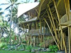 Kelapa house_01