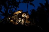 Palm house_01