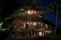 Palm house_02