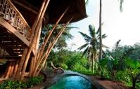 Palm house_03