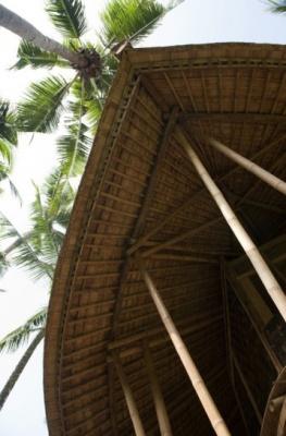 Palm house_04